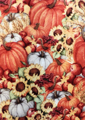 Old Fashioned Pumpkins close up