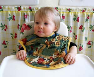 Chicken baby bib, click for more views