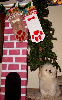 Click for larger view of dog paw stocking