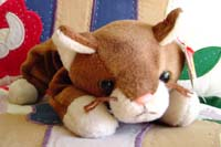 Pounce the Cat Beanie Baby